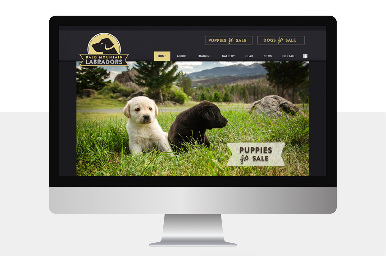 Bald Mountain Labradors Website Desktop View